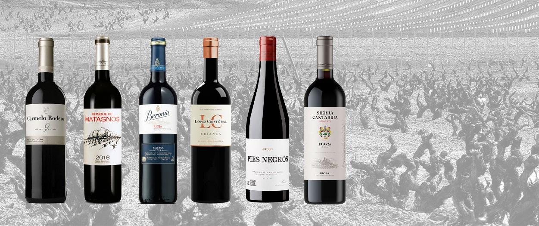 Ribera Rioja